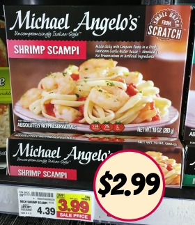 $1.00 Off Any One Michael Angelo's Single Serve Product!