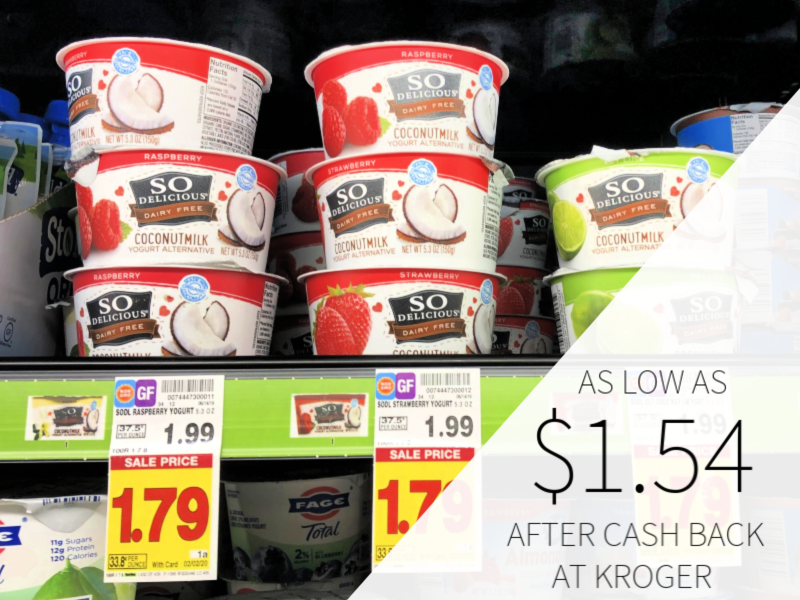 So Delicious Yogurt Alternative As Low As $1.54 At Kroger