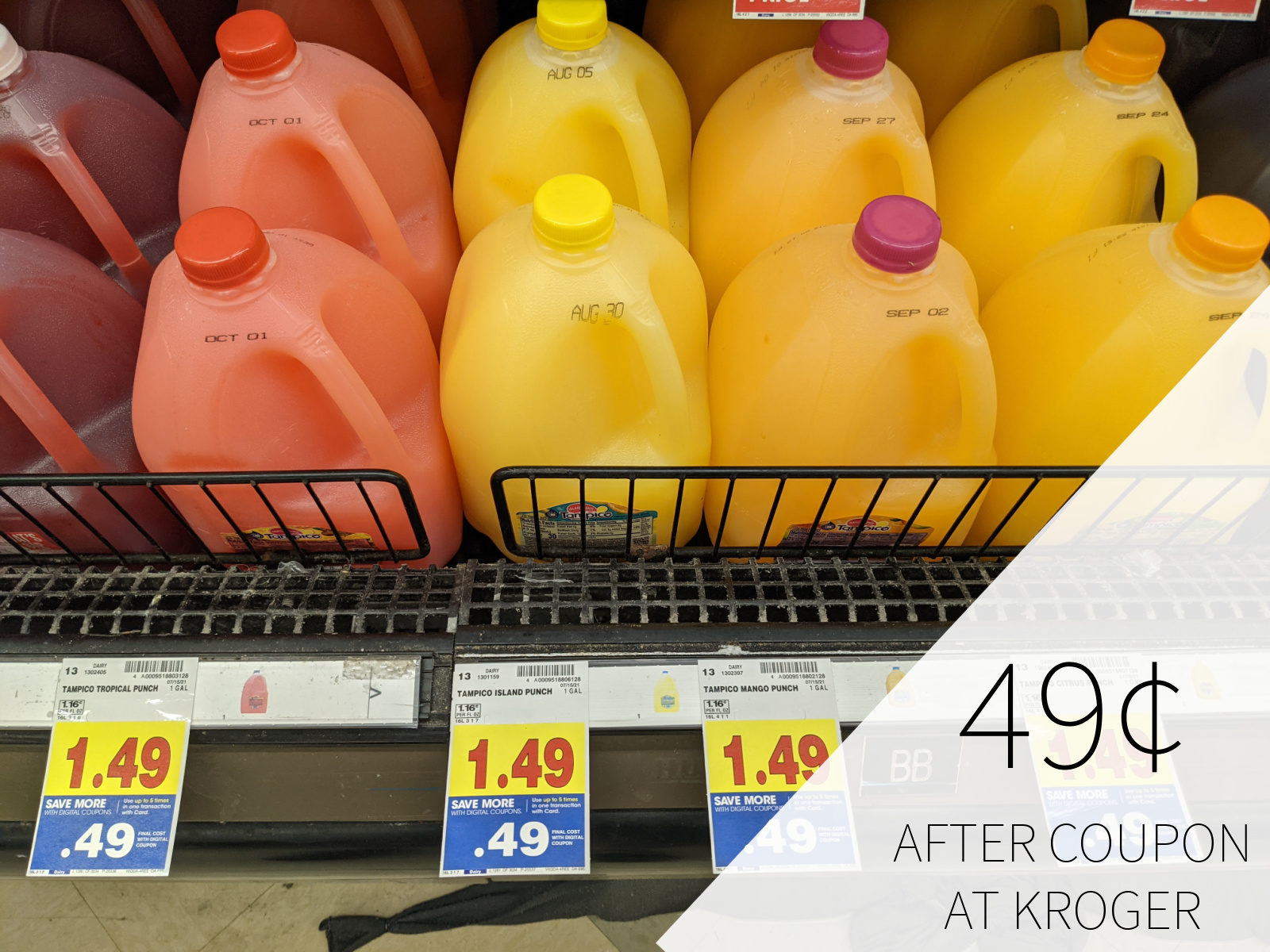 Tampico Punch Just 49$